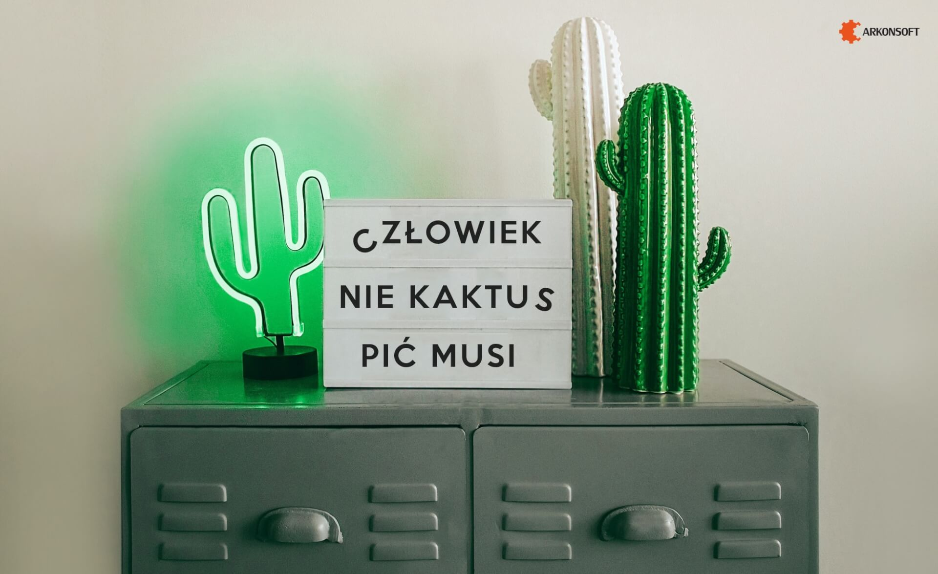 Tapety na pulpit - kaktusy
