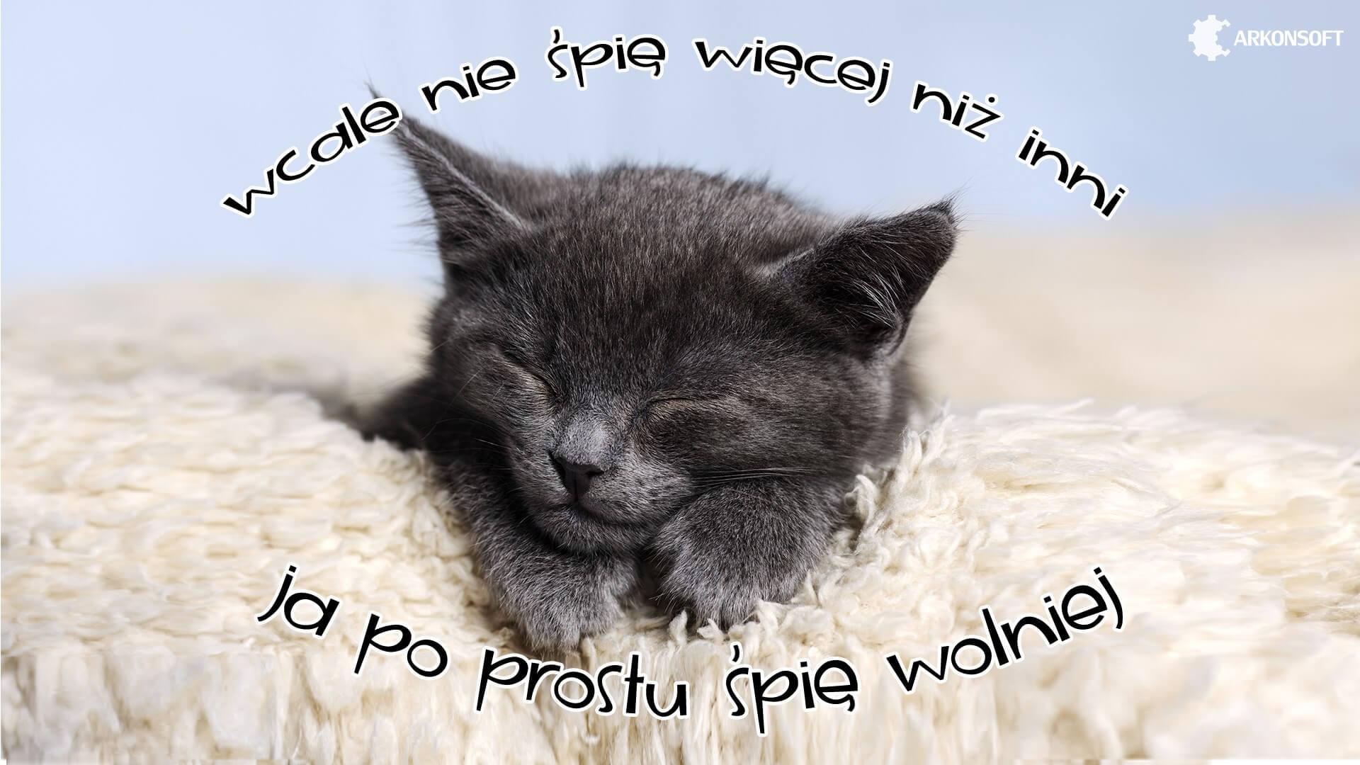 Tapety na pulpit - mały kotek